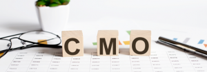 The Cmo's Role As A Change Agent To Deliver Outstanding